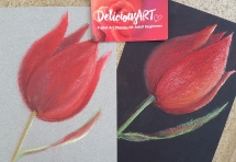 Learn to paint with pastels in Brisbane