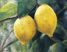 Jeann Cotter 'Lemons' in soft pastel
