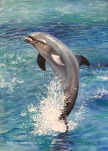 Dolphin pastel by Jeanne Cotter