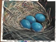 Egg Nest Nov2018 Delicious Art Brisbane IMG_7220