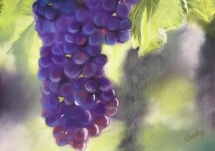Grapes on the vine at Delicious Art Class Brisbane