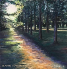 Haig Park Morning Light by Jeanne Cotter 2019 Wmark