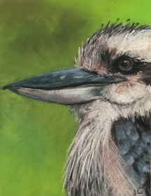Kookaburra-by-Jeanne-Cotter-2019