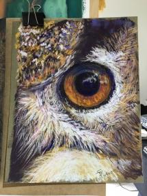 Owl eye IMG_6158
