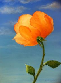 rose-in-the-sky-jeanne-treloar