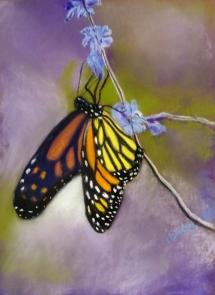 Butterfly Lesley