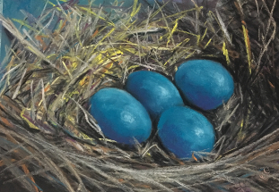 Eggs in a nest by Jeanne Cotter
