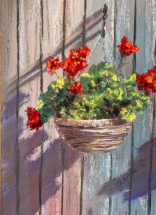 Geraniums on my fence by Jeanne CotterLR