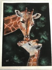 Giraffes by di