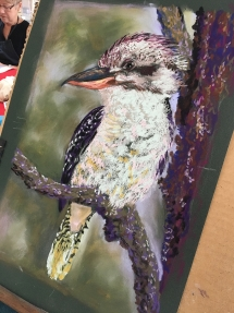 Kookaburra Pastel Student Art at Delicious Art Class Dec19 1