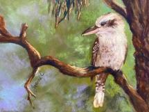 Kookaburra-in-Tree-by-Jeanne-Cotter