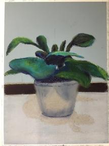 Pot plant at Delicious Art Classes Brisbane April2019 973402