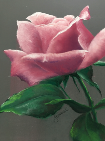 Rose-in-Pastel-by-Jeanne-Cotter-2019-LR