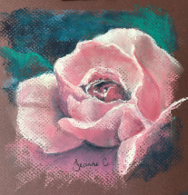 Valentines-Rose-by-Jeanne-Cotter-2018